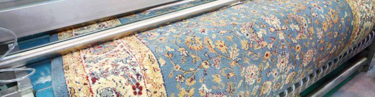 Wash the carpet