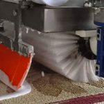 شستشن فرش ماشینی دستباف گونه در قالیشویی